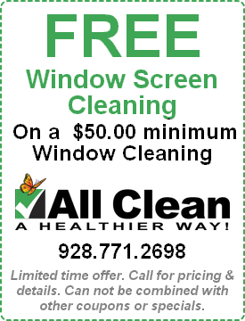 Window Screen Cleaning Special